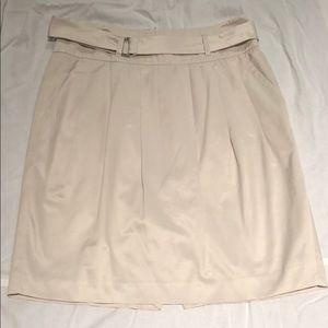 Banana Republic elegant skirt
